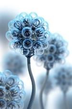 Lightbulbflowers